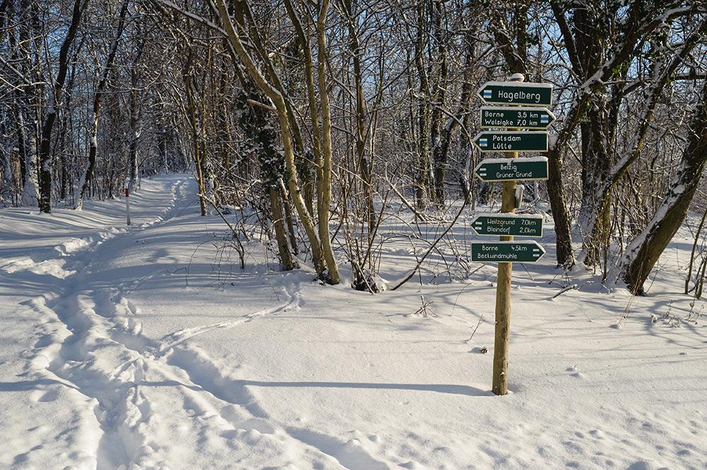 Schneelandschaft in Brandenburg